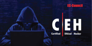 ceh v11 course, ethical hacking course