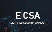 ecsa-course-craw-security